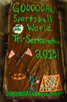 Sportsball World Tri-Series-Athon 2013
