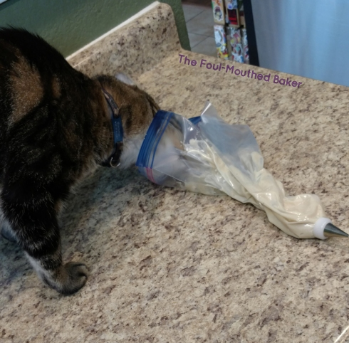 Watch and take pictures as your cat rudely steals your icing. No reason to stop him...